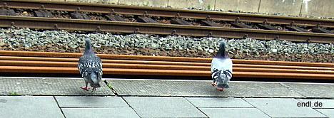 Warten auf den Aussiedler-Zug © Endl 2007