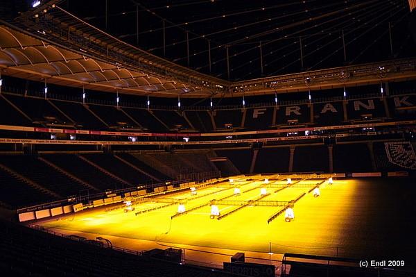 Rasensolarium - Frankfurt Commerzbank Arena - © Bild: Alexander Endl