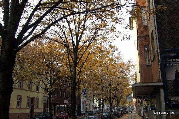 Königsteiner Straße, Frankfurt, Höchst